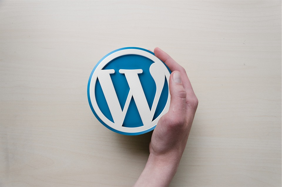 16 Motivi per creare un sito con WordPress
